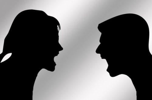 Article : Le meilleur des insultes entre partenaires de vie