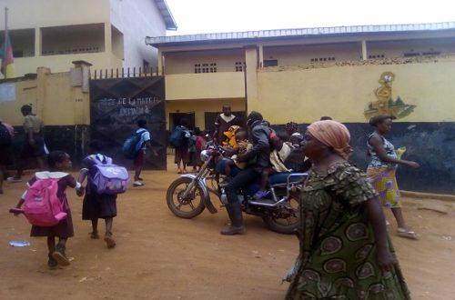 Article : Rencontres sur le chemin de l'école au Cameroun