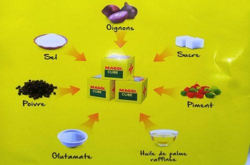 Article : Visite de Nestlé-Cameroun : son bouillon culinaire MAGGI est-il une nécessité?